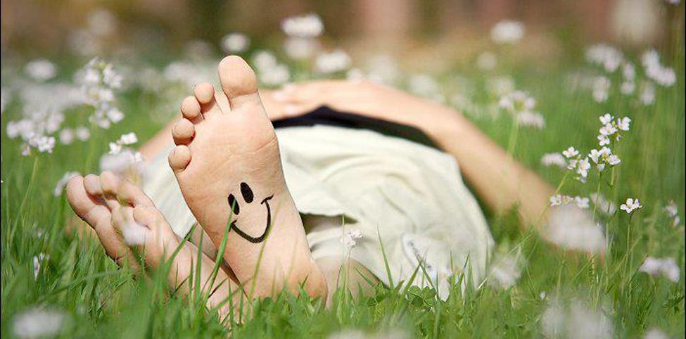 7-felici sull'erba bagnata di primo mattino 2