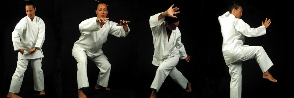 N 4 forme statiche Qi Gong e Tai Ji