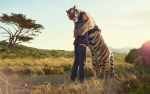tiger_and_boy_friendship_