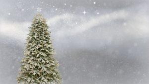 Albero-Natale-RivistaDonna.com