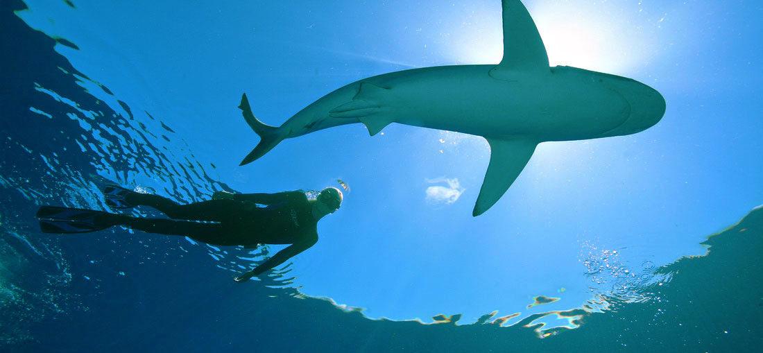 OceanRamsey-RivistaDonna.com