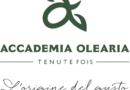 Accademia-Olearia-RivistaDonna.com