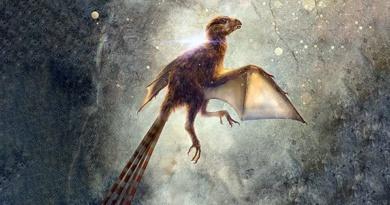 Fossile-RivistaDonna.com