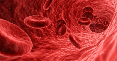 Medicina-Sangue-RivistaDonna.com