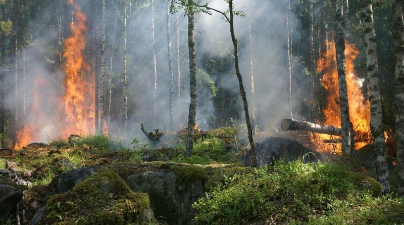 Pericolo-Incendio-RivistaDonna.com