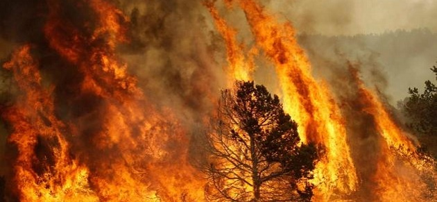 Incendi-Ogliastra-RivistaDonna.com