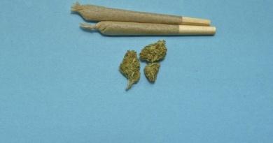 Salute-Cannabis-RivistaDonna.com